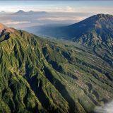 Indonesia Sumatra Mandheling grade 1